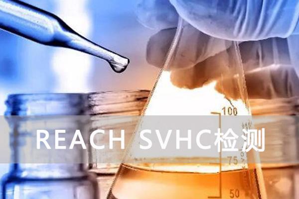 reach测试报告
