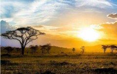 坦桑尼亚PVOC认证流程是什么